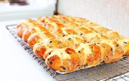 Petits pains croisés chauds Image libre de droits
