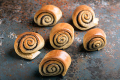 Petits pains cuits au four tordus délicieux Photo libre de droits