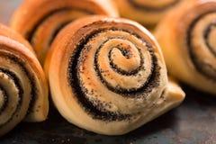 Petits pains cuits au four tordus délicieux Images libres de droits