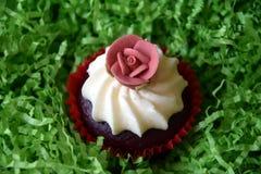 Petits pains décorés de la fleur rose sur le fond vert Photographie stock