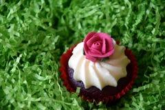 Petits pains décorés de la fleur rose sur le fond vert Photographie stock libre de droits