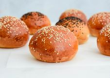 Petits pains d'hamburger faits maison Petits pains savoureux avec le sésame Image stock