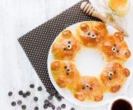 Petits pains d'ours Bre de lait formé par ours ridiculement adorable de traction-à part Photo stock