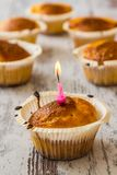 Petits pains dans des supports de petit gâteau Photos stock