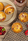 Petits pains de canneberge Photos libres de droits