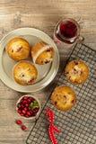 Petits pains de canneberge Images stock