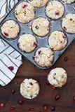 Petits pains de canneberge dans un bidon de petit pain avec les baies fraîches photos libres de droits