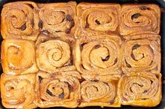 Petits pains de cannelle collants faits maison Photographie stock libre de droits