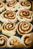 Petits pains de cannelle dans un plateau Images stock