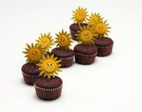 Petits pains de chocolat Image stock