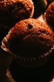 Petits pains de chocolat avec des écrous sur le fond foncé, foyer sélectif Photographie stock