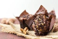Petits pains de chocolat avec des noix Image stock