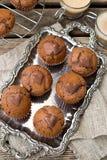 Petits pains de chocolat avec les puces de chocolat et le coeur de chocolat Image stock