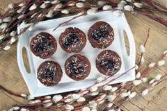 Petits pains de chocolat de ressort Image stock