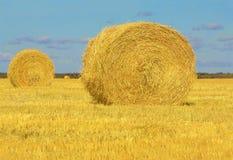 Petits pains de meule de foin dans Manitoba photos stock