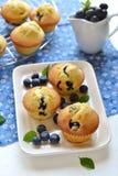 Petits pains de myrtille d'un plat blanc Image stock