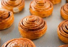 Petits pains doux frais Photo libre de droits