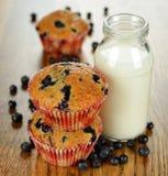 Petits pains et lait de myrtille Photographie stock libre de droits