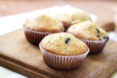 Petits pains faits maison avec des myrtilles Photographie stock libre de droits