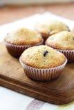 Petits pains faits maison avec des myrtilles Image stock