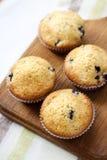 Petits pains faits maison avec des myrtilles Image libre de droits