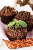 Petits pains faits maison de chocolat dans le support de papier de petit gâteau Photos stock