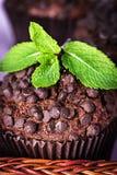 Petits pains faits maison de chocolat dans le support de papier de petit gâteau Image stock