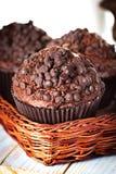 Petits pains faits maison de chocolat dans le support de papier de petit gâteau Image libre de droits