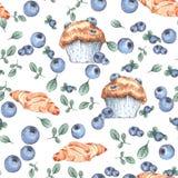 Petits pains faits maison de myrtille avec de vraies myrtilles Photographie stock libre de droits