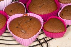 Petits pains fraîchement cuits au four de chocolat se refroidissant sur le plateau en métal photo libre de droits
