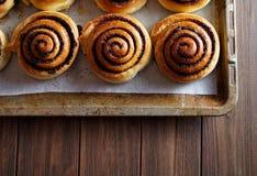 Petits pains fraîchement cuits au four de petits pains de cannelle avec du cacao et des épices sur une plaque de cuisson en métal Image libre de droits