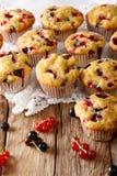 Petits pains frais avec des baies de groseille noire et rouge en gros plan Verti Photos stock