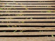 Petits passages couverts en bois de pont Photos stock