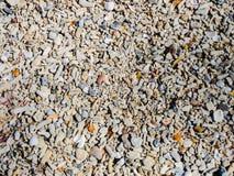 Petits pierres et fragments de coquille photo libre de droits