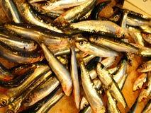 Petits poissons à vendre photo libre de droits