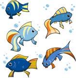 Petits poissons avec des bulles Photos stock
