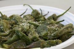 Petits poivrons verts grillés avec Chunky Salt pour les Tapas espagnols Photos stock