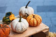 Petits potirons de Halloween dans des couleurs oranges et blanches sur une caisse en bois photos libres de droits