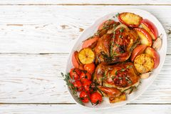 Petits poulets entiers cuits au four avec les pommes, le citron, l'ail, le thym, les tomates et les épices images stock