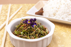 Petits salade et riz asiatiques Image stock