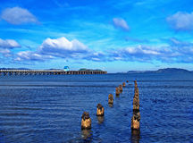 Petone Royalty Free Stock Images