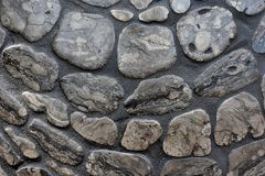 Petoskey stone wall Royalty Free Stock Photography