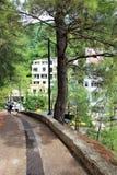 Petovac Черногория июнь 2015, зеленые растения и идя путь стоковая фотография