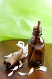 Petróleo de canela Imagem de Stock Royalty Free