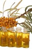 Petróleo de las bayas del mar-espino cerval. Foto de archivo libre de regalías