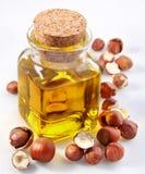 Petróleo do Filbert com porcas Imagem de Stock Royalty Free