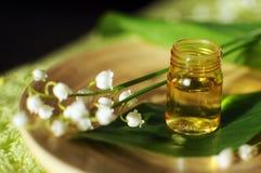 Petróleo esencial para aromatherapy Fotos de archivo