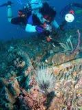 Petróleo Platforn e mergulhador foto de stock royalty free