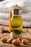Petróleo y frutas del Argan Imágenes de archivo libres de regalías