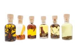Petróleos comestíveis diferentes Imagens de Stock